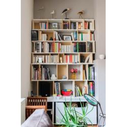Meuble Bibliothèque sur-mesure (H170cm - L140 cm)